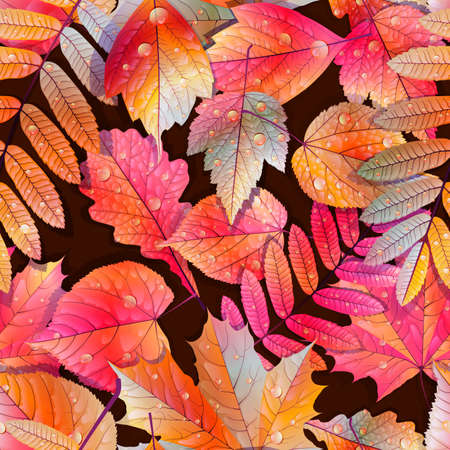 Autumnal swatch ready detailed seamless wet leaves background  EPS10 Imagens - 30878679