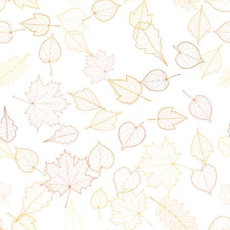 venation: Autumn leaf skeletons template.