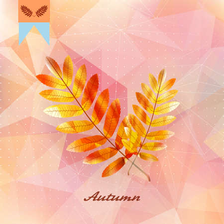 Autumnal leaf background made of triangles. Imagens - 75410443