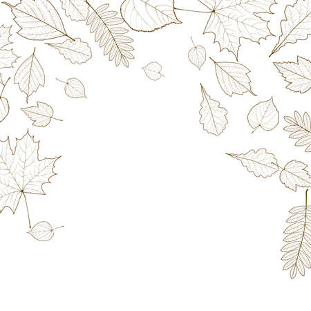 autumn leaf skeletons template royalty free cliparts vectors and
