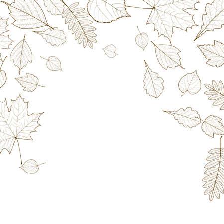 Autumn leaf skeletons template.