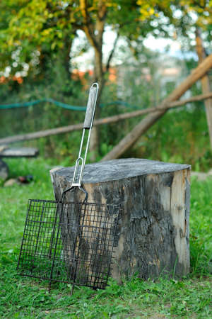 old lattice for a grill rests on the stump Stock Photo