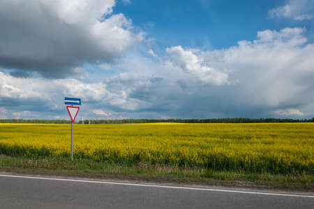 photo edges: agricultural field of the blossoming raps behind the road under the cloudy sky and with a road sign