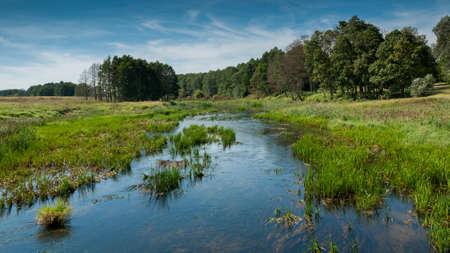 non stock: narrow river. field. wood. swamp. summer. landscape
