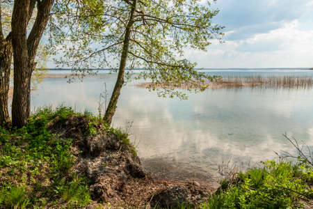 non stock: coast of the big beautiful lake with trees over water. spring Stock Photo
