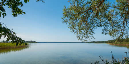 picturesque summer landscape. View from the shore because of the branches of trees on a large beautiful lake