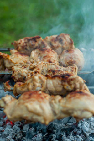 delicious chicken kebab with a ruddy crust on skewers cooked on the coals from the fire in field conditions