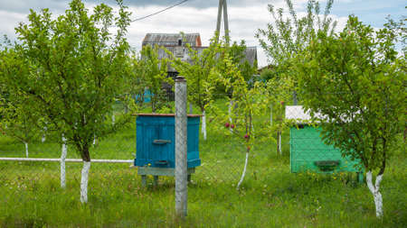 Bee hive behind a fence on a country farmstead Stock Photo