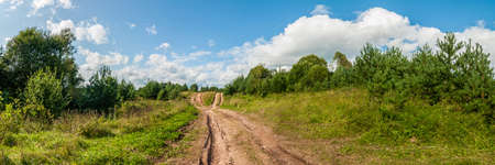 non stock: picturesque panoramic view of a rural field dirt road under a beautiful blue cloudy sky