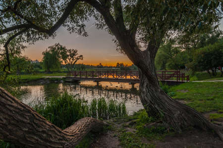pedestrian bridge: beautiful summer evening landscape. view from the coast with trees on a pedestrian bridge over a river in a city park on a sunset background