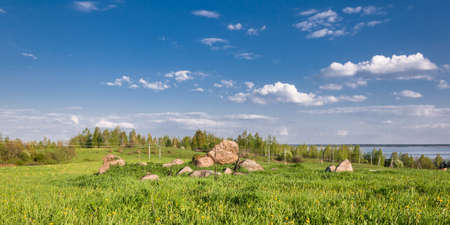 summer landscape. A hilly meadow overgrown with thick grass with large stones under a blue cloudy sky in good weather