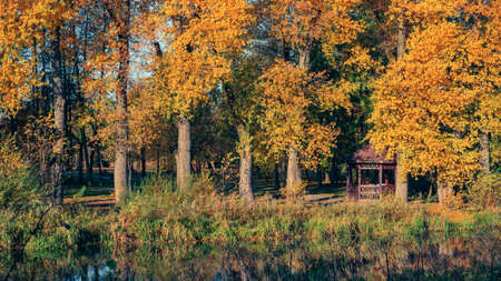 funny colors of a colorful autumn city park with a wooden arbor in the shade of tall trees with bright orange-yellow foliage on the grassy bank of a narrow river 스톡 콘텐츠