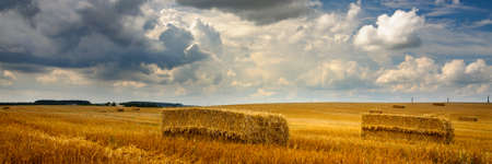 a wide scenic agricultural field with post-harvest golden stubble and cubic straw bales under a dramatic cloudy sky. artistic summer farming concept for creative presentation