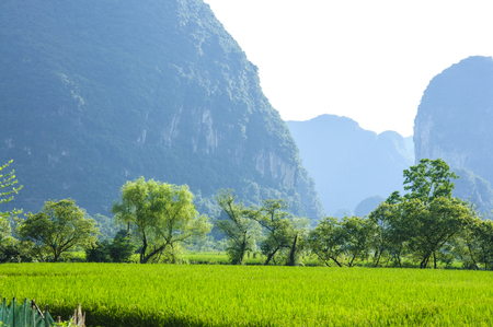 Karst mountains and rural scenery in summer