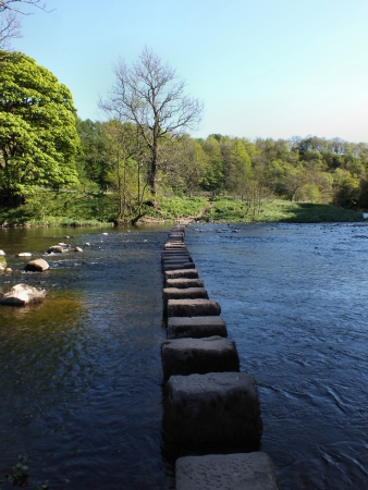 the River Hodder which is crossed by these stepping stones  photo