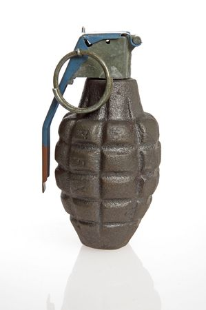 A green grenade on a white background.