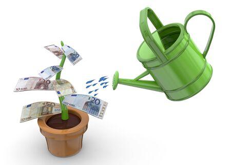 market gardening: Money plant with sprinkler