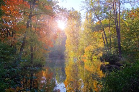 Streaks of sunlight shinning through the trees in an autumn lake