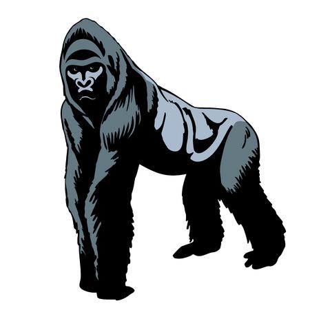 Gorilla-Silhouette Standard-Bild - 85878346