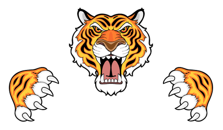 Tiger head and claws Stock Photo