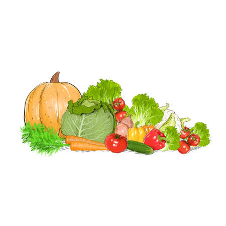 vegetables drawing set group isolated over white