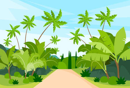 tropical leaves: Jungle Forest Green Landscape with Road Path and Blue Sky Vector Illustration Illustration