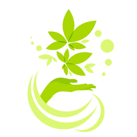 Hand Hold Green Leaves Logo Icône isolé sur fond blanc illustration vectorielle