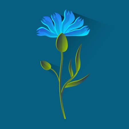 bluet: Cornflower Isolated, Bluet Over Blue Background Flat Vector Illustration Illustration