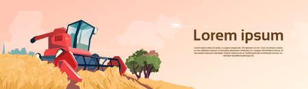 harvesting: Combine Harvesting Wheat Crop In Field Flat Vector Illustration