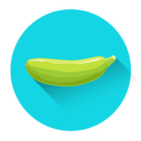 Zucchini Colorful Vegetable Icon Flat Vector Illustration