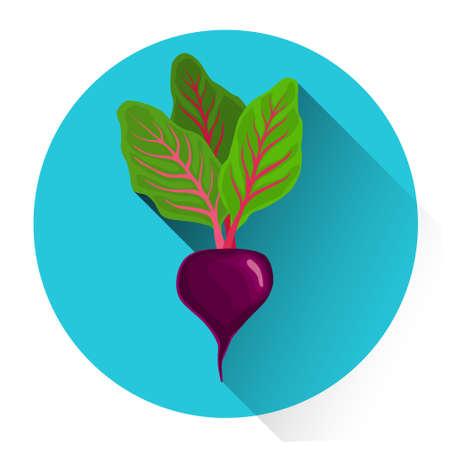 Beet Colorful Vegetable Icon Flat Vector Illustration Illustration