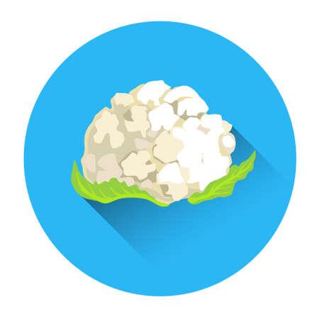 cauliflower: Cauliflower Colorful Vegetable Icon Flat Vector Illustration