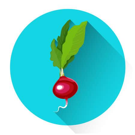 Radish Colorful Vegetable Icon Flat Vector Illustration