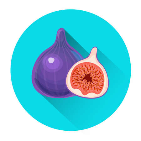 Figs Colorful Fruit Icon Flat Vector Illustration