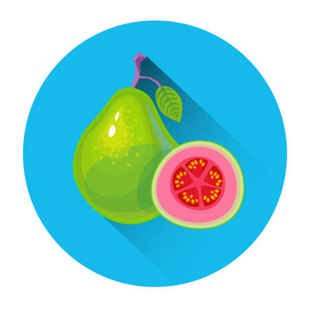 guava fruit: Guava Colorful Fruit Icon Flat Vector Illustration Illustration