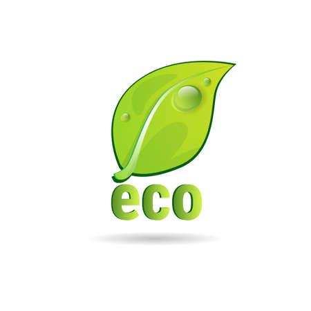 Eco Friendly Organic Natural Product Web Icon Green  Flat Vector Illustration