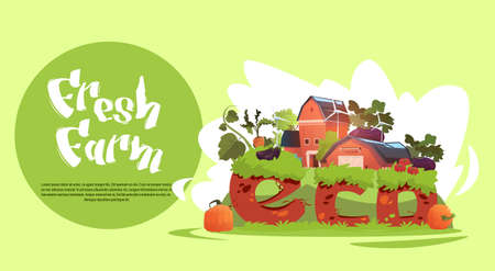 Farm Building Eco Farming Infographics Fresh Domestic Food Concept Flat Vector Illustration