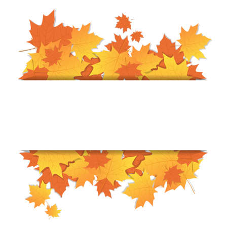 Autumn Leaves Frame On Banner With Copy Space Colorful Maple Ornament Fall Season Vector Illustration Illustration