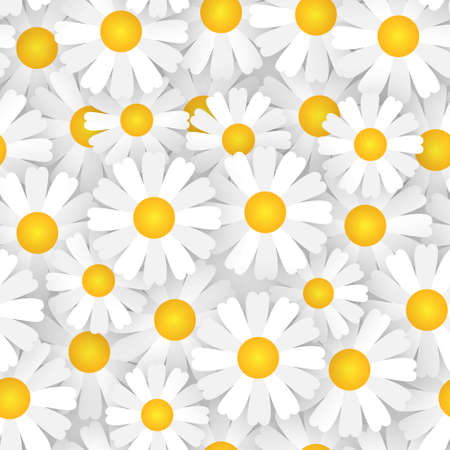 White Chamomile Flowers Seamless Pattern Beautiful Floral Ornament Background Vector Illustration Ilustracja