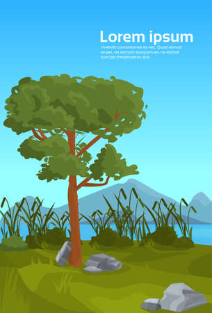 landscape pine mountain river reed outdoor nature background flat vertical copy space vector illustration