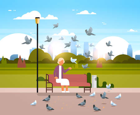 senior woman feeding flock of pigeon sitting wooden bench urban city park cityscape background horizontal flat vector illustration Banque d'images - 113677773