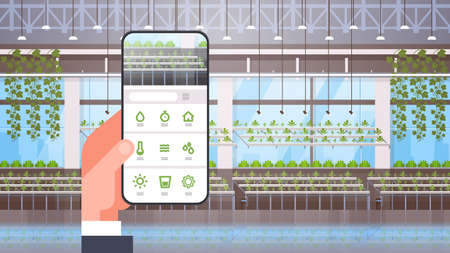 hand holding smartphone using smart control farming system mobile application organic hydroponic green plants row cultivation farm modern greenhouse interior horizontal vector illustration