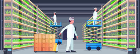 agriculture engineers working in modern organic vertical farm interior farming system concept pallet truck scissors lift platforms equipment green plants growing industry horizontal flat vector illustration