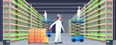 Ingenieros agrícolas que trabajan en el interior de la granja vertical orgánica moderna concepto de sistema agrícola transpaleta tijeras plataformas elevadoras equipo plantas verdes industria en crecimiento horizontal ilustración vectorial plana Ilustración de vector