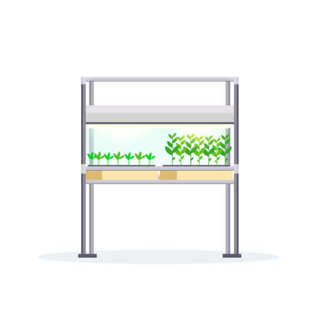 modern indoor garden digital greenhouse electronic terrarium farm glass container eco farming house plants growing concept flat white background vector illustration