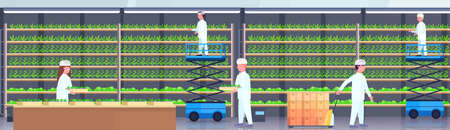 agriculture engineers in uniform carrying pallet truck holding potted plants people working modern organic vertical farm interior green farming industry concept horizontal banner flat vector illustration