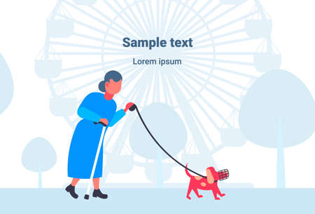 senior woman walking with dog in muzzle best friend concept grandmother and animal pet having fun city park ferris wheel background full length horizontal copy space flat vector illustration Ilustração
