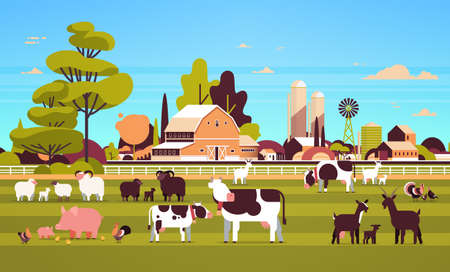 farm animals grazing cow goat pig turkey sheep chicken different domestic animals breeding farming concept flat farmland barn countryside landscape flat horizontal vector illustration