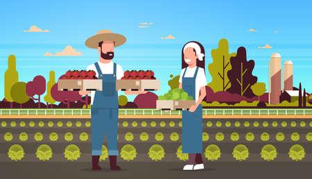couple agriculteurs tenant des boîtes tomates rouges et vertes homme femme récolte des légumes travailleurs agricoles eco agriculture concept terres agricoles champ campagne paysage pleine longueur horizontale illustration vectorielle