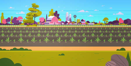 rows young freshly germinated plants vegetable plantation agriculture and farming concept farmland field countryside landscape background flat horizontal vector illustration